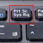 【初心者向け】Windowsで画面のスクリーンショット・キャプチャを取る方法