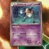 【ポケカ】BWのカードを整理+思い入れのあるBWポケモン・ベスト10